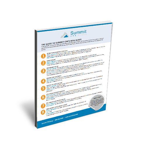 401k-audit-guide-book