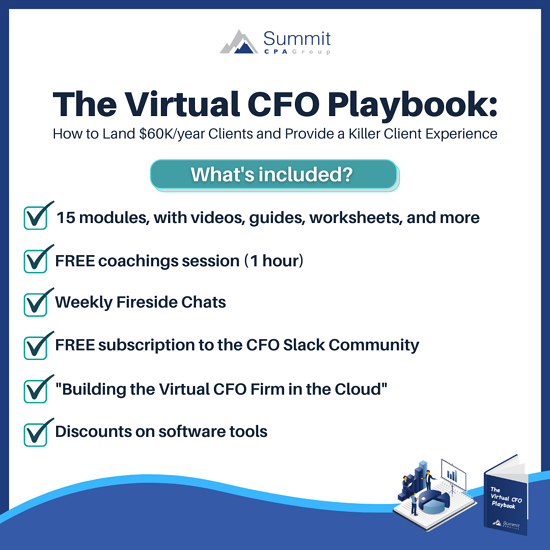 The Virtual CFO Playbook Inclusions