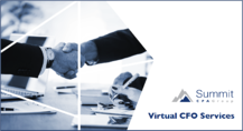 VCFO Services Guide