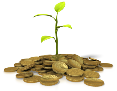 coins_investing_plant_8756