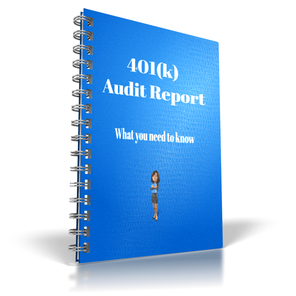 401k Audit report