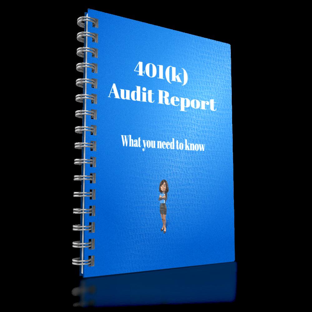 401k Audit report