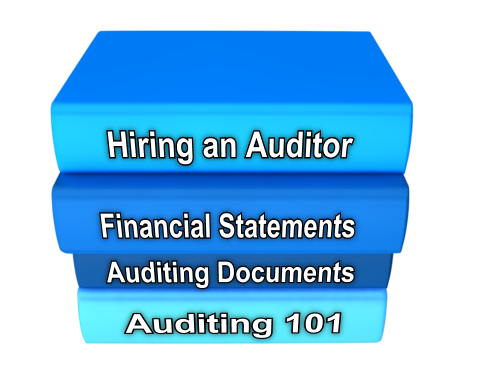 Auditing_guides-133682-edited.png