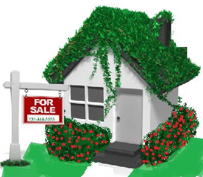 ivy_covered_house_12466.png
