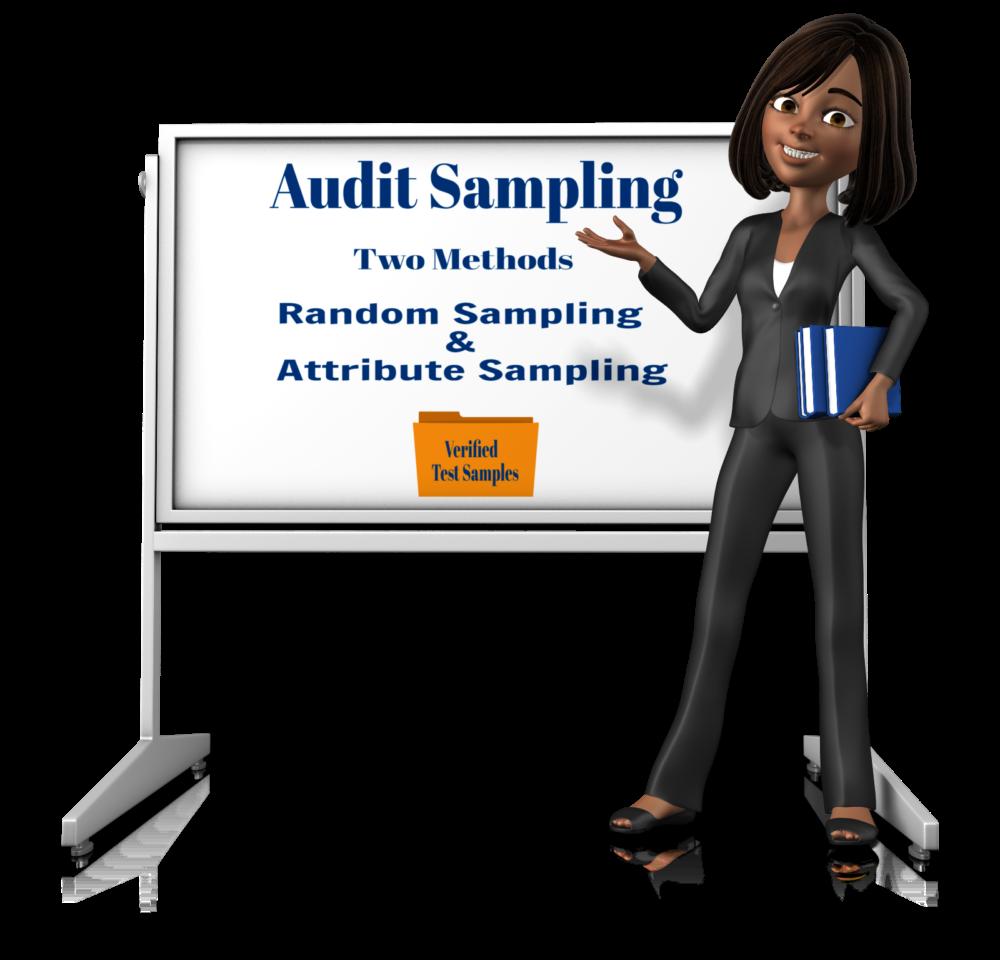 Audit Sampling for Your 401(k) Plan